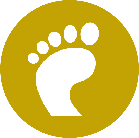 AOS Foot and Ankle Surgery Center Icon